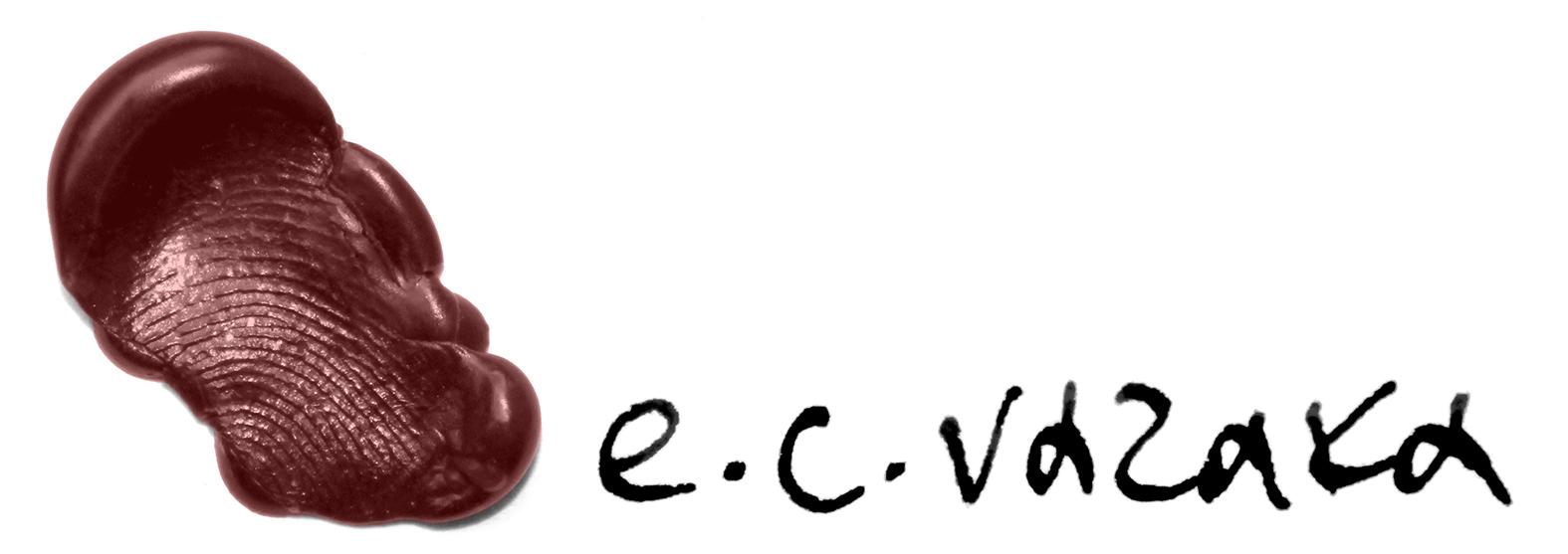 ECV LOGO